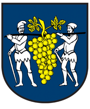 Oficiálna stránka obce Rybník