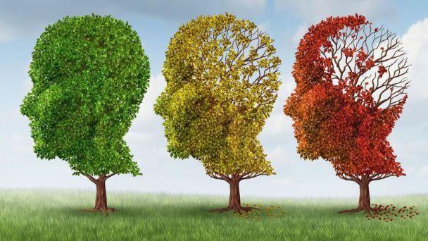 Prevencia Alzheimerovaj choroby