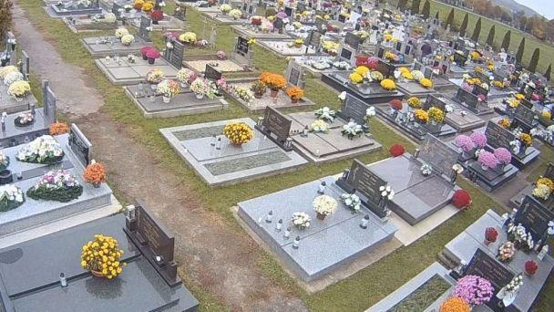 Cintorín - kosenie